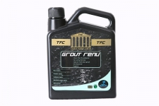 T&F GROUT RENU 1LT